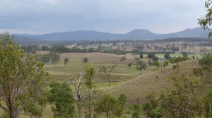 Nindooinbah (13 km Beaudesert) 175 acres (70.79ha) in 2 lots $1.75 mill.