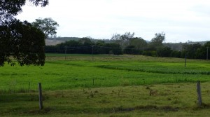 """Tawarri"" Rosevale 86.03ha (212.5 ac) $1.99mill Lucerne and grazing."